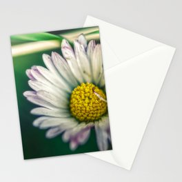 The rough of nature Stationery Cards