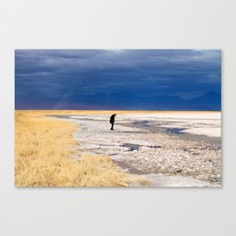 atacama desert landscape shot  Canvas Print