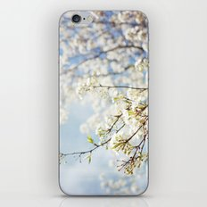 White Flowers Against the Sky iPhone Skin