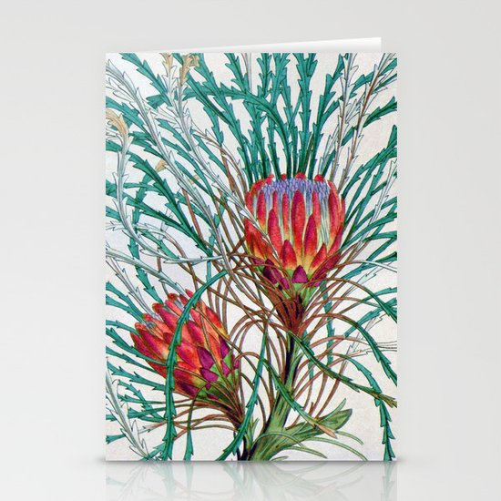A Protea flower Stationery Cards