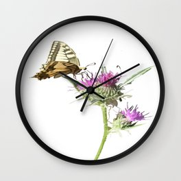Scarce Swallowtail Butterfly Resting On Thistle Flower Wall Clock