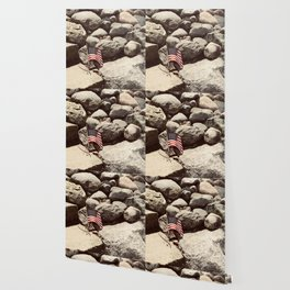 Proud Flag on Rocky Shores Wallpaper