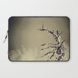 Dead tree Laptop Sleeve