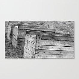 Apple Crates Canvas Print