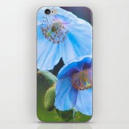 Himalayan Blue Poppy iPhone Skin