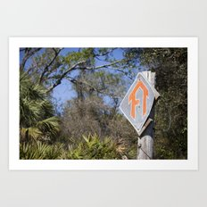 Florida Trail in Winter (unrecognizable weather in Florida) Art Print