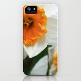 Spring Lovelies iPhone Case