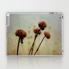 One Winter Day Laptop & iPad Skin