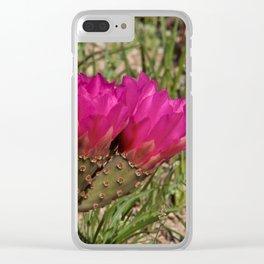 Beavertail Cactus in Bloom - II Clear iPhone Case