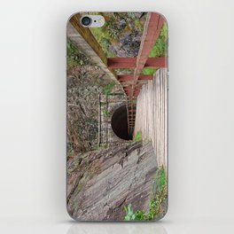 Paw Paw Tunnel iPhone Skin