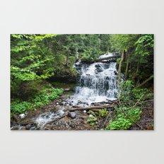 Wagner Falls, Munising, Michigan Canvas Print