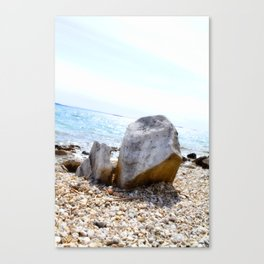 A Rock's Perspective Canvas Print