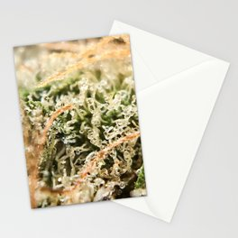 Diamond OG Indoor Hydroponic Close Up Trichomes Viewing Stationery Cards