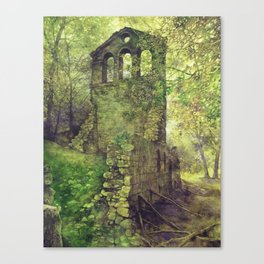Ruins in the forest Canvas Print