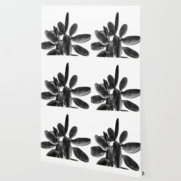 Black White Cactus #1 #plant #decor #art #society6 Wallpaper