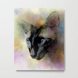 Cat 620 Siamese Metal Print