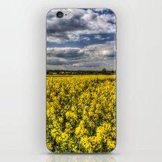 Summer fields iPhone & iPod Skin