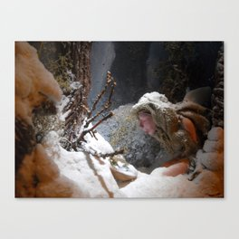winter came (to the land of oblivion) Canvas Print