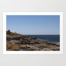 Prouts Neck, Maine Art Print