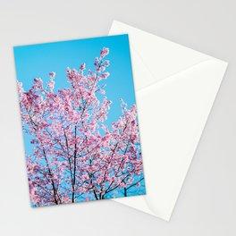 Sakura 05 Stationery Cards