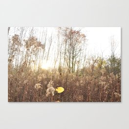 Sunset Haze Canvas Print
