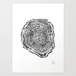 Treestump Art Print