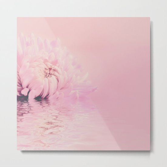Romantic chrysanthemum flower soft pink pastel Metal Print
