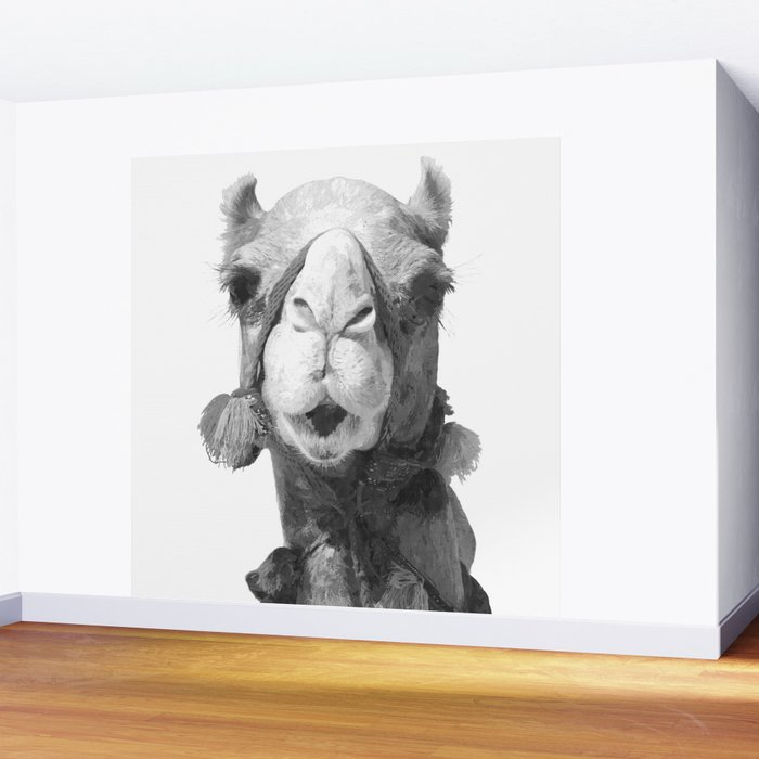 Black and White Camel Portrait Wall Mural