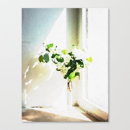 Vase of Flowers with shadows watercolor Canvas Print