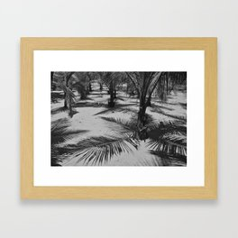 Palm Shades Framed Art Print