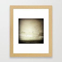 Sepia Gulls Framed Art Print