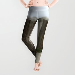 Old Fence Poles Leggings
