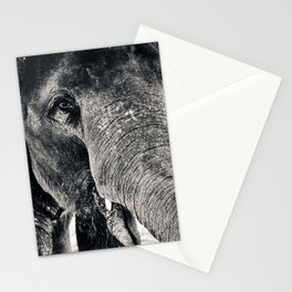 Trunk Stationery Cards