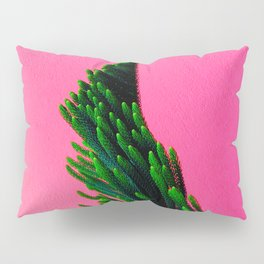 Green Plant on Pink Background Pillow Sham