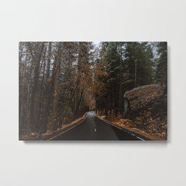 AUTUMN FOREST ROAD Metal Print