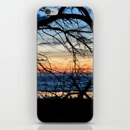 Tree Silhouette Against the Sunset iPhone Skin