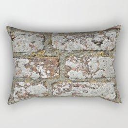 old wall bricks Rectangular Pillow