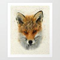 Fox - Animal Faces Art Print