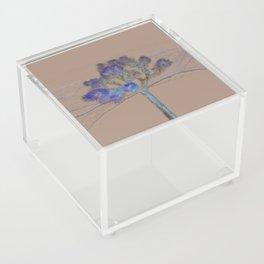 Joshua Tree Acid Wash by CREYES Acrylic Box