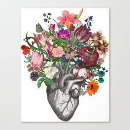Anatomical heart and flowers Canvas Print