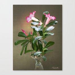 Spade's Desert Rose Canvas Print