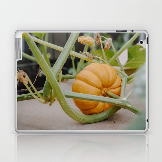 Pumpkin Season Is Here Laptop & iPad Skin