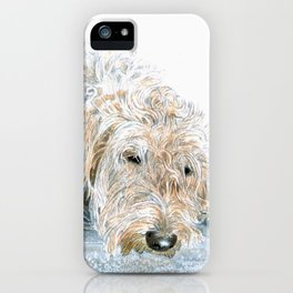 Sleeping Labradoodle iPhone Case