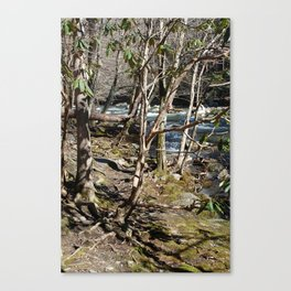 Little River in Winter Canvas Print