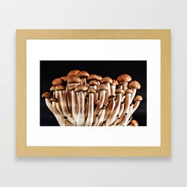 Mushroom II Framed Art Print