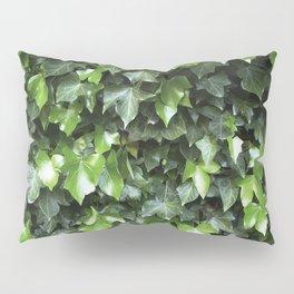 Evergreen Ivy Pillow Sham