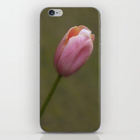 Pretty pink tulip iPhone Skin