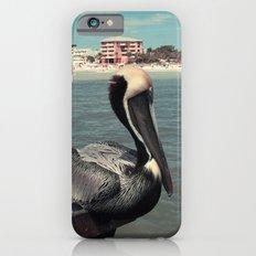 Florida Pelican Color Photo Slim Case iPhone 6s