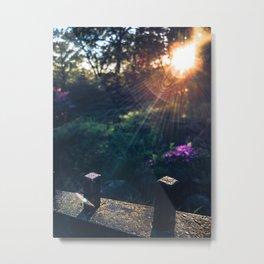 Garden in the sunshine Metal Print