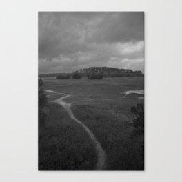 Foottrail, Skidaway Island State Park Canvas Print